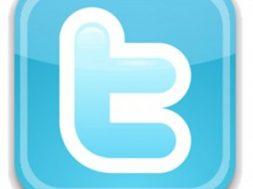Twitter-Logo-300×293